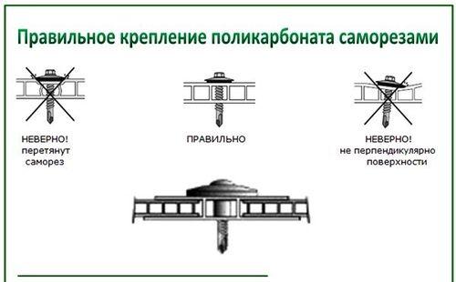 Как монтировать и укладывать поликарбонат на теплице: фото ...: http://propolikarbonat.ru/stykovat-polikarbonat-na-teplice