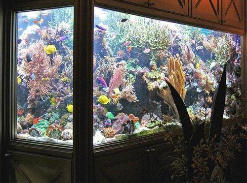 sdelat_akvarium_iz_orgstekla_05