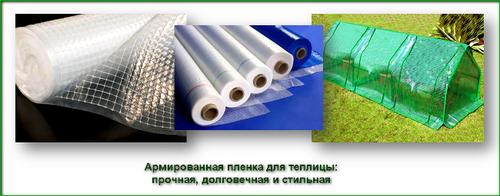 kak_vybrat_plenku_dlya_teplicy_6