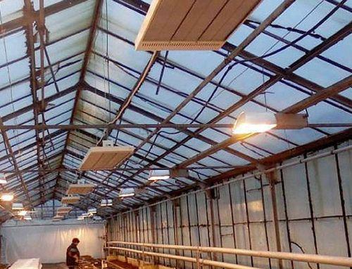 Как выбрать потолочные обогреватели для теплицы  