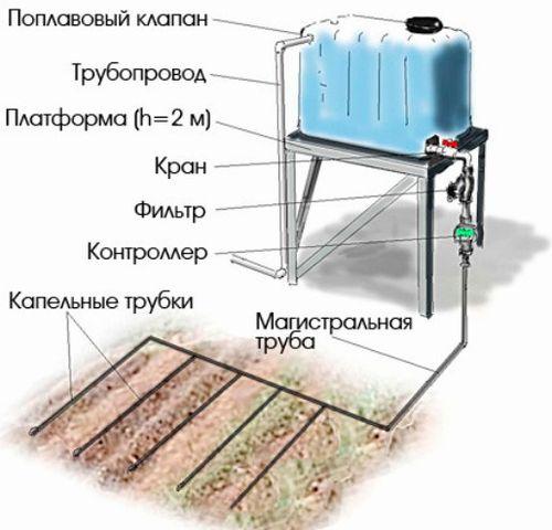 Как обустроить капельный полив в теплице из бочки