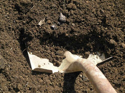Влажная почва