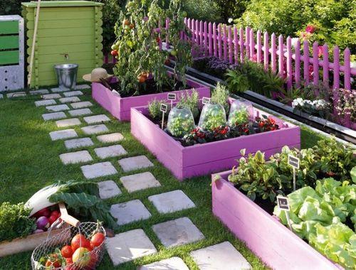 Обустройство огорода во дворе
