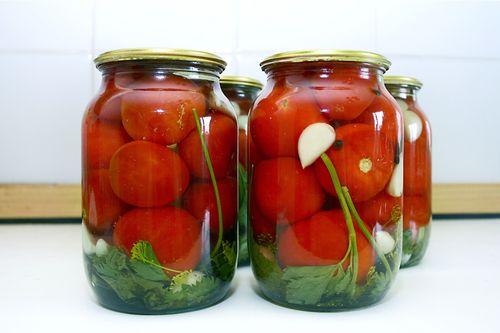 Характеристики и выращивание томатов сорта Санька