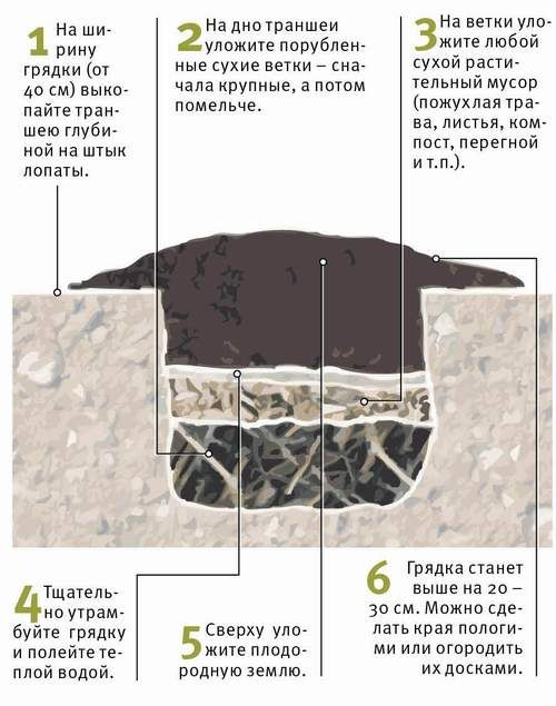 Схема устройства теплой грядки